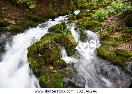 fast stream in the woods - stock photo