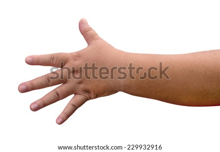 Fat woman hand isolated on the white background. - stock photo