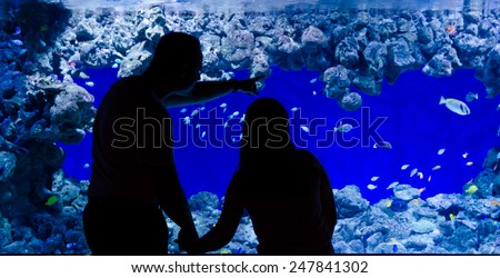 Father and daughter looking for aquarium fishes - stock photo