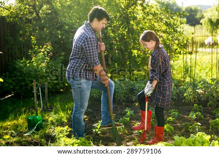 Father and daughter spudding garden bed with shovels at sunny day - stock photo