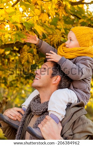 father enjoying colder season outdoor in park teaching leaves - stock photo