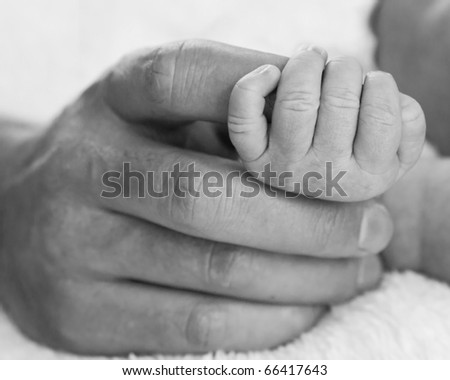 Father holding hand of small baby in black and white - stock photo