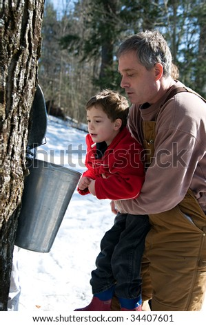 father holding up young son to look into a sap bucket - stock photo