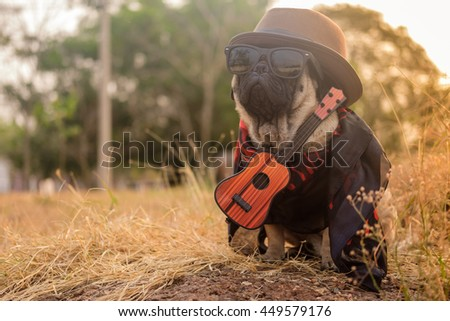 Fawn pug dog wearing indy guitarist costume on the rock with morning sunlight. - stock photo