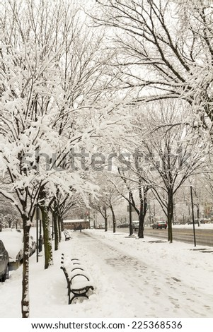 February 2014 snowstorm on the Eastern Parkway pathway in Crown Heights, Brooklyn - stock photo