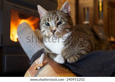 feet in stockings with cat by the fireplace - stock photo