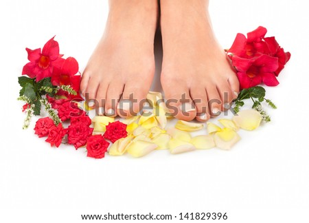 Feet with rose petals on white - stock photo