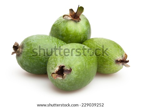 feijoa isolated