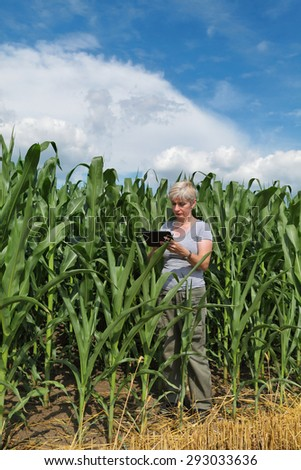 Female agronomist or farmer  inspect quality of corn using tablet - stock photo