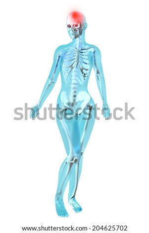 Female anatomy. Headache. 3D illustration. - stock photo