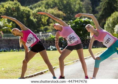 Female athletes warming up in park on a sunny day - stock photo