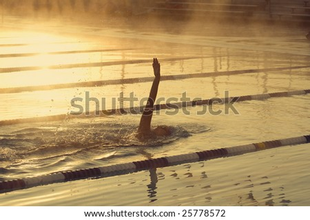 Female backstroke swimmer in outdoor pool early morning - stock photo