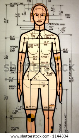 female crash dummy drawing - stock photo