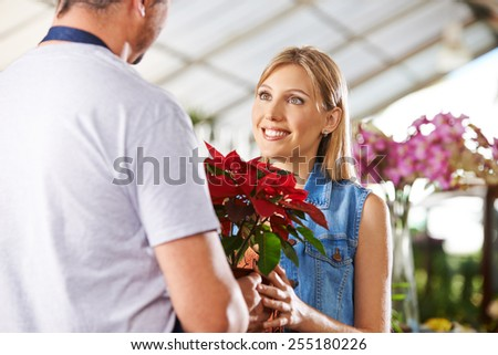 Female customer buying poinsettia in a pot in a nursery - stock photo