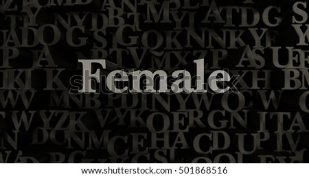Female - 3D rendered metallic typeset headline illustration.  Can be used for an online banner ad or a print postcard.