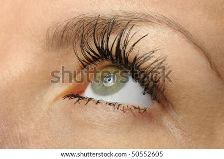 Female eye close up. Selective focus. High detailed - stock photo