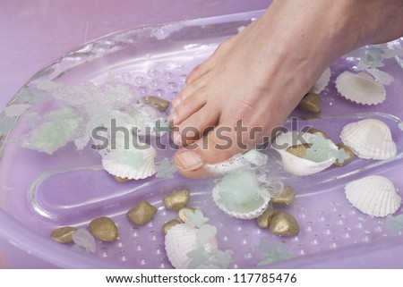 Female feet in foot bath with shells - stock photo