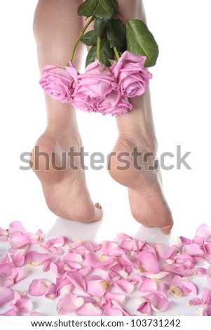 Female feet with rose petals over white background