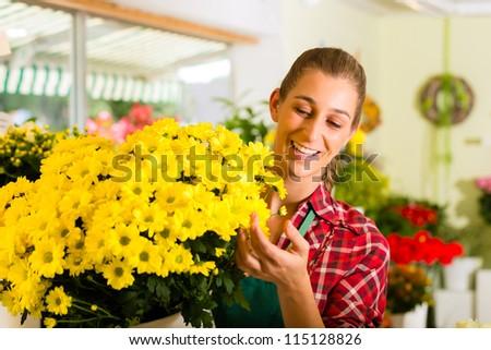 Female florist in flower shop or nursery presenting flowers - stock photo