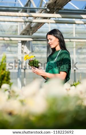 Female florist or gardener in flower shop or nursery - stock photo