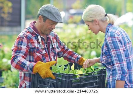 Female gardener looking through green seedlings held by mature man - stock photo