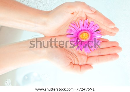 female hand and flower in water - stock photo
