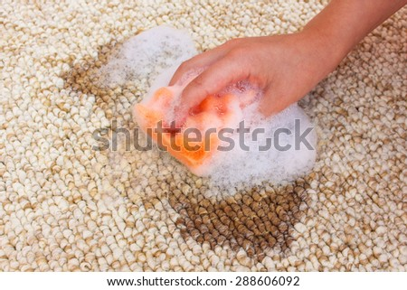 Female hand cleans carpet with sponge and detergent. Coffee spilled on floor.  - stock photo
