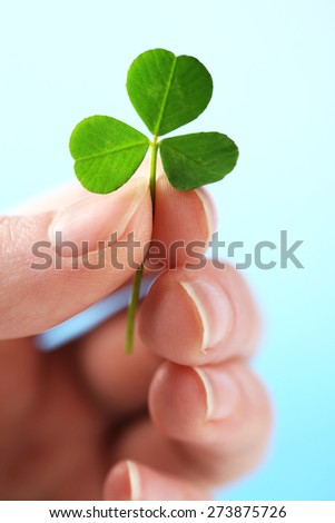 Female hand holding green clover leaf on sky background - stock photo