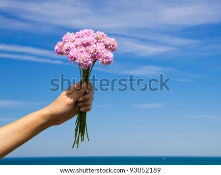 Female hand holding some wildflowers against a blue sky - stock photo