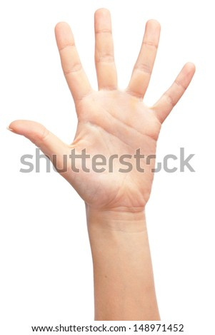 Female hand isolated on white background - stock photo