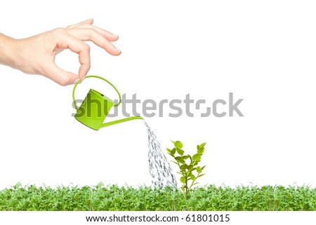 Female hand watering a small plant on green grass with a small bright green watering can - stock photo