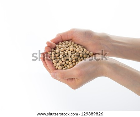 Female hands cupping raw soy beans