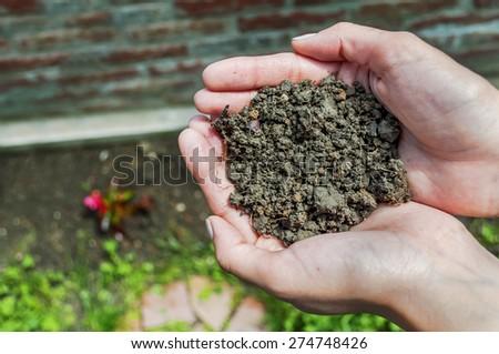 Female hands full of soil over soil background, it's representing fertility - stock photo