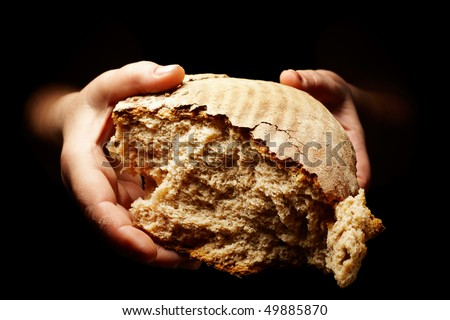 female hands holding a divided brown loaf of bread - stock photo