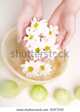 female hands in bowl full of water and flower - stock photo