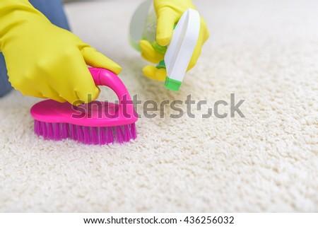 Female hands in gloves brush their carpet brush. - stock photo