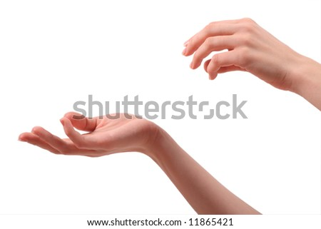Female hands on a white background - stock photo