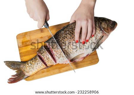 female hands with a knife cut fish on the white isolated background - stock photo
