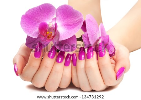 female hands with fragrant orchid - stock photo