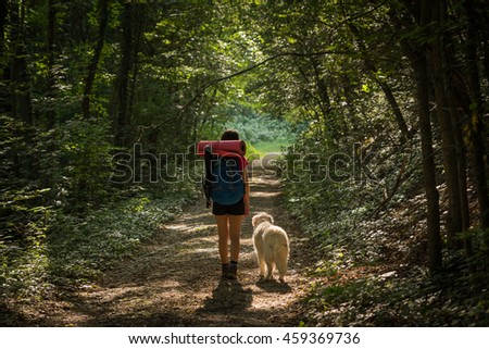 Female hiker walking with her dog under the rays of the morning sun in the mountain forest - stock photo