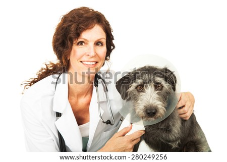 Female professional veterinarian doctor examining a mixed breed dog. Both subjects looking at the camera. Isolated on white.  - stock photo