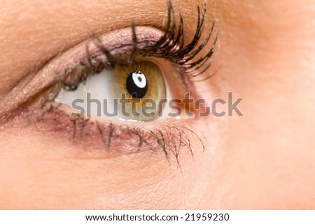 female wide open eye with long eyelashes macro - stock photo