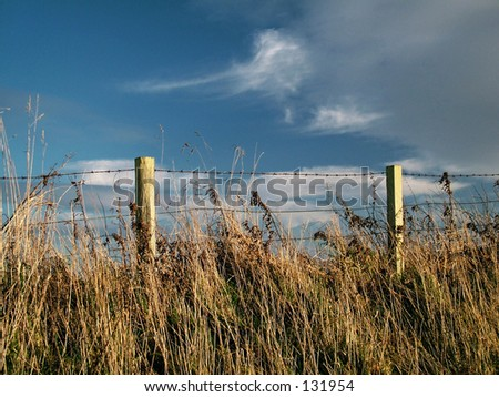 Fence on Grassy Bank - stock photo