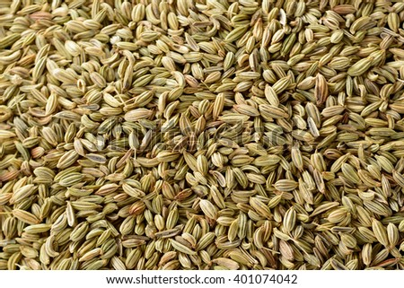 fennel seed - stock photo