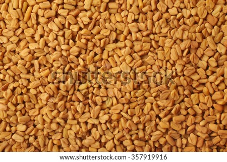 Fenugreek seeds, for backgrounds or textures - stock photo
