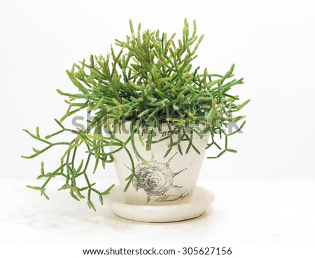 Christmas Decorations With Sage And Rosemary