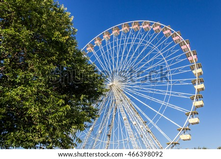 Ferris Wheel and a tree Over Blue Sky