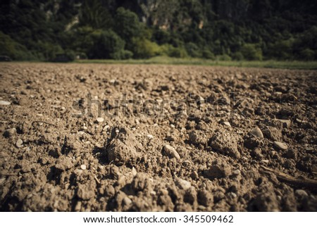 Fertile humus soil in the farmland field, woods and green vegetation on background - stock photo