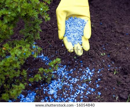 Fertilize - stock photo