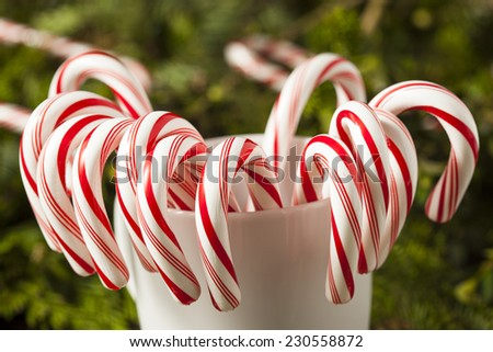 Festive Red and White Peppermint Candy Canes - stock photo
